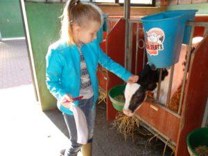 met de klas naar de boerderij